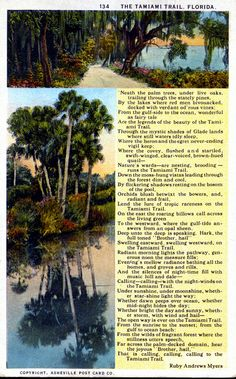 The Tamiami Trail - Florida. Verse by Ruby Andrews Myers. Asheville Post Card Co. 1923