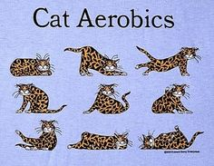 Edward Gorey Cats | Edward Gorey - T-shirt - Read Read Read Cat