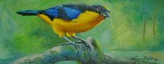 Essa é uma espécie de passarinho muito comum na região nordeste do Brasil, e foi retratada com muito realismo.