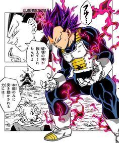 Dragon Ball Z, Z Tattoo, One Piece Manga, Akira, Manga Art, Animals Beautiful, Superhero, Painting, Fictional Characters