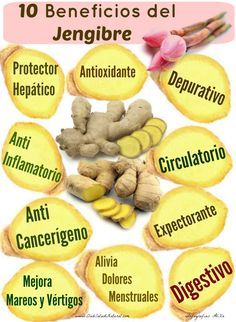 10 Beneficios del Jengibre – Club Salud Natural