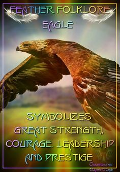 Eagle - symbolizes great strength, courage, leadership and prestige