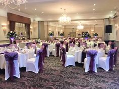 Chair Covers And Sashes Essex Malibu Pilates Exercises 22 Best Images Dark Purple Themed Cover Sash Hire For Weddings In Hertfordshire Bedfordshire London
