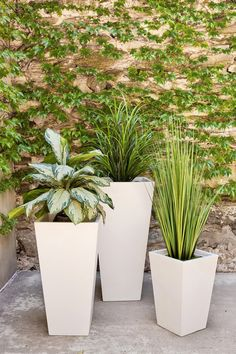 Front Door Planters, Tall Planters, Modern Planters, Concrete Planters, Outdoor Planters, Landscaping With Rocks, Modern Landscaping, Garden Landscaping, House Plants Decor