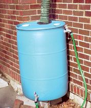 how to make your own rain barrel and save on water bills... for use in gardens and such...