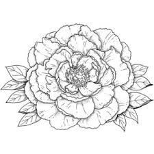 27 Trendy Ideas For Flowers Drawing Outline Dover Publications Diy Tattoo, Tattoo Art, Flower Crafts, Flower Art, Daisy Drawing, Drawing Flowers, Coloring Books, Coloring Pages, Colouring