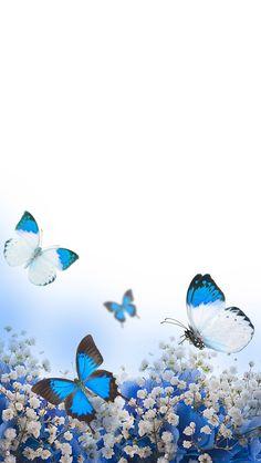 New Wallpaper Celular Fofo Borboleta 38 Ideas Blue Butterfly Wallpaper, Flowery Wallpaper, Sunset Wallpaper, Blue Wallpapers, Butterfly Art, Flower Backgrounds, Wallpaper Backgrounds, Iphone Wallpaper, Paper Butterflies