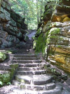 Hiking trail in Cuyahoga Valley National Park, Ohio, USA (by sfgamchick).