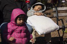 Piovono piume d'oca: scoppia la battaglia dei cuscini