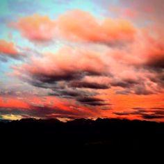 colori fantastici all'alba e al tramonto con lo sfondo delle Dolomiti di Brenta.. #pinetanature