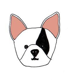 Natalie Hughes // French Bulldog