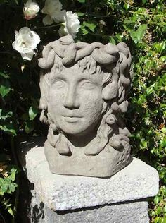 1000 ideas about head planters on pinterest planters succulents and gardening - Medusa head planter ...