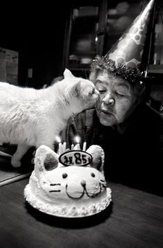 happy 85 ✭ kissing cat
