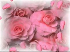 Where Roses Never Fade - Mike Evans - YouTube