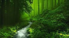 Most Beautiful Images of Nature   25 Most Beautiful Nature Pictures, from the best in the world, don't ...