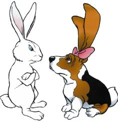 Basset Hound, Cute Bunny, Scooby Doo, Funny Cute, Tobias, Animals And Pets, Rock Painting, Bunnies, Diva