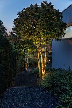Parc's Gartengestaltung gmbH|FotosClaudia Below Lighting Your Garden, Backyard Lighting, Outdoor Lighting, Small Outdoor Kitchens, Outdoor Rooms, Green Facade, Back Garden Design, Tree Lighting, Landscape Lighting