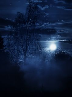 In The Misty Glow of The Moon