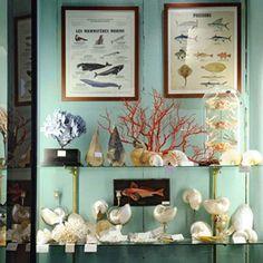 shopping cabinet de curiosités - Marie Claire Idées