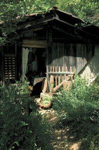Jardins de sortilège à Terran (31) ; En attendant, je lis les livres de Bernard Bertrand