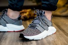in piedi guarda l'adidas prophere pinterest adidas