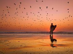 Beach. Surf. Sunset.