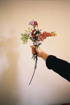 Demand Design - urbanoutfitters:   Via stammered
