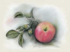 Autumn Apple and Acorns #pastel #artwork by @andersondesigns #artprints #AutumnDecor