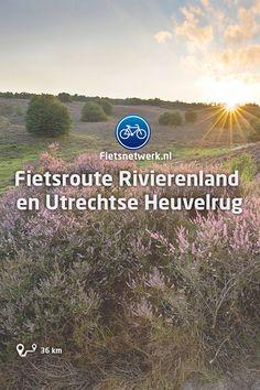 🚲Fietsroute Rivierenland en Utrechtse Heuvelrug #Fietsen #Fietsroutes #Fietsknooppunten #UtrechtseHeuvelrug #Betuwe Holland, Amsterdam, Museum, Utrecht, Netherlands, Chill, Hiking, Country Roads, Places
