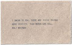 ...walt whitman....