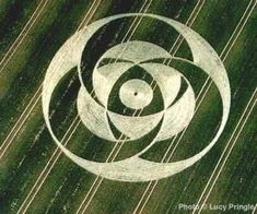 Crop Circle by christine
