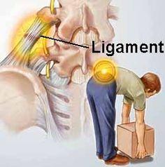 Hasil gambar untuk back pain adalah