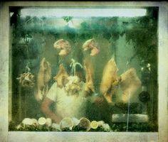Tripe seller by Vittorio Chiampan on 500px
