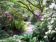 Shady garden path - Lakewold Gardens, Washington