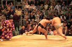 sumo | sumo wrestling tournament
