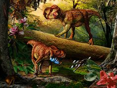 Canadian scientists identify two new species of dinosaurs that could help fill in evolutionary gaps