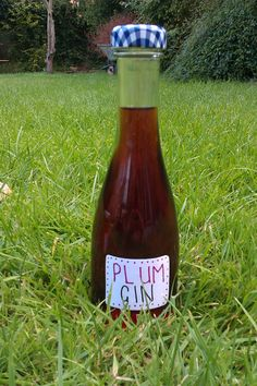 Wild plum gin with recipe