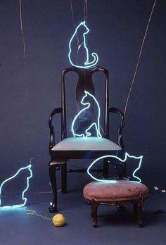 Cats neon