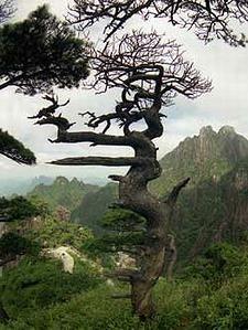 Sanqingshan - Mount Sanqingshan National Park, Yushan County, Jiangx, China (UNESCO World Heritage Site)