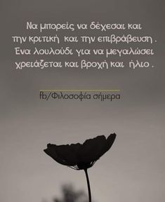 Greek Quotes, Picture Quotes, Motivational Quotes, Cyprus, Inspirational, Pictures, Instagram, Inspiring Sayings, Photos