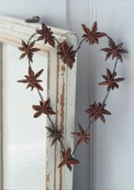 wire and anise - think i will make one like this for the kitchen and paint it white :)