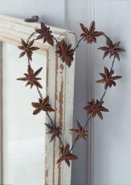 lovely 'star' anise..