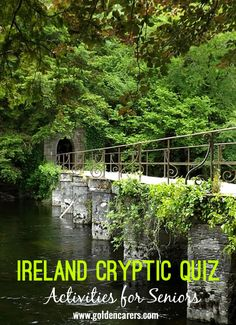 IRELAND Cryptic Quiz: All the following answers have the letters IRE somewhere in the word. A fun quiz for the elderly!