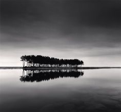 1stdibs | PINE TREES, STUDY 1, WOLCHEON, GANGWONDO, SOUTH KOREA, 2007 michael Kenna