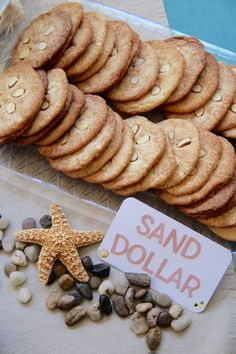 """""""Sand Dollar"""" Cookies For A Nautical-Theme Party 