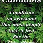 Cannabis is an awesome medicine - Marijuana Memes Weed Quotes, Stoner Quotes, Stoner Art, Drug Quotes, Marijuana Facts, Weed Facts, Marijuana Decor, Marijuana Recipes, Weed Humor