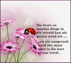 Afrikaans Quotes, Scripture Verses, Positive Quotes, Things To Think About, Words, Christianity, Motivation, Sayings, Text Posts
