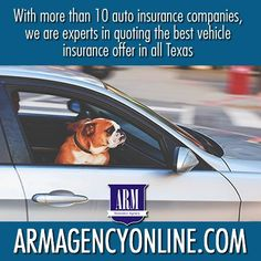 We have all the insurance services for you and your family Auto Insurance Companies, Car Insurance, Dump Trucks, Houston, Arm, Texas, Texas Travel, Garbage Truck