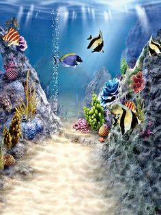 Kate Blue Seabed Fish Real Fantasy Children Photo Backdrop