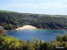Millbay on the Salcombe Estuary Visit Devon, British Beaches, Devon Coast, Devon England, South Devon, Devon And Cornwall, Camping Holiday, Places In Europe, English Countryside